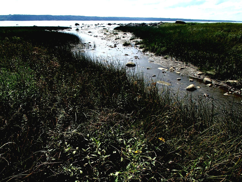 Plan d'intervention pour la protection des cours d'eau tributaires