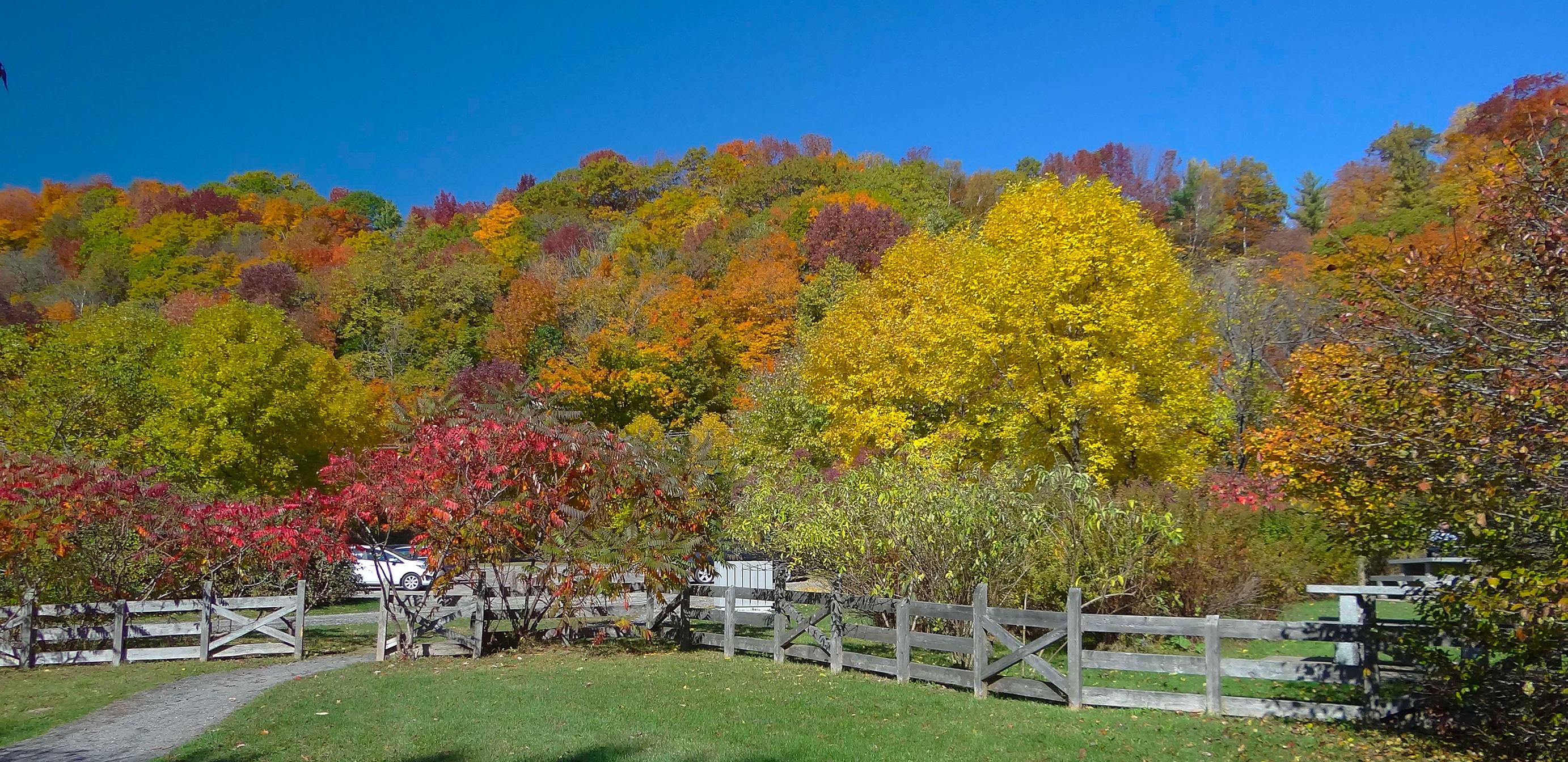 Parc des hauts-fonds l'automne